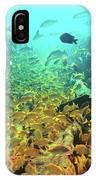 Bahamas Shipwreck Fish IPhone Case