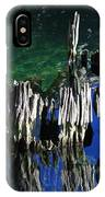 Bald Cypress Stump IPhone Case