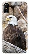 Bald Eagle - Portrait IPhone Case