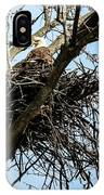 Bald Eagle In The Nest IPhone Case