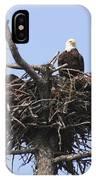 Bald Eagle Nest IPhone Case
