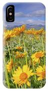 Balsam On The Rocky Mountain Front IPhone Case