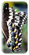 Baltimore Checker Spot Butterfly IPhone Case