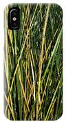 Bamboo Shoots  IPhone Case