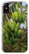 Banana Tree IPhone X Case