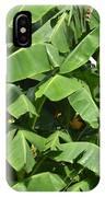 Banana Trees IPhone Case