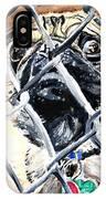 Bandit 2 IPhone Case
