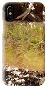 Banksia Baueri IPhone Case