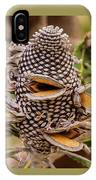 Banksia Cone IPhone Case