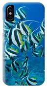 Bannerfish School IPhone Case