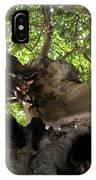 Banyan Sky IPhone Case