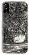 Banyan Street 3 IPhone Case