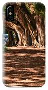 Banyans - Marie Selby Botanical Gardens IPhone Case
