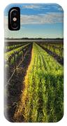 Barossa Vineyard Morning IPhone Case