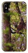 Barred Owl In The Forest IPhone Case