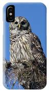Barred Owl Portrait IPhone Case