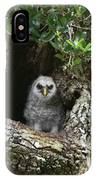 Barred Owlet IPhone Case