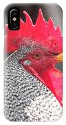Barred Rock Rooster IPhone Case