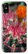 Barrel Cactus II IPhone Case
