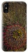 Barrel Cactus Top View IPhone Case