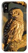 Bathed In Sunset IPhone Case