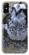 Bathing Osprey In Shallow Water IPhone Case