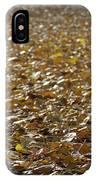 Beach Of Autumn Leaves IPhone X Case