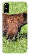 Bear Eating Daisies IPhone Case