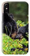 Bear Kisses IPhone Case