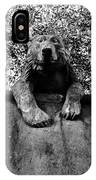 Bear On The Wall IPhone Case