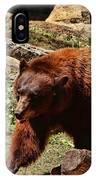 Bear Pacing IPhone Case