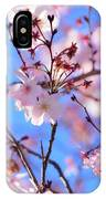 Beautiful Blossoms Blooming  For Spring In Georgia IPhone Case