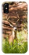 Beautiful Buck Deer In The Pike National Forest IPhone Case
