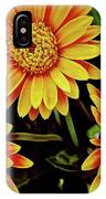 Beautiful Daisies IPhone Case