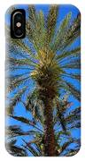 Beautiful Florida Palm Trees IPhone Case