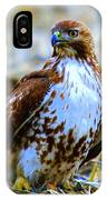 Beautiful Hawk IPhone Case
