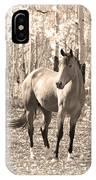 Beautiful Horse In Sepia IPhone Case