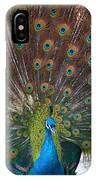 Beautiful Peacock IPhone Case