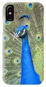 Beautiful Peacock Walking Around IPhone Case