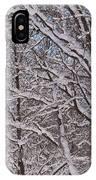 Beautiful Snow IPhone Case