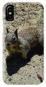 Beautiful Squirrel Standing In A Sandy Area In California IPhone Case