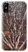 Beautiful White Birch IPhone Case