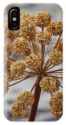 Beauty Of The Seeds IPhone Case