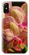 Beauty Up Close 4 IPhone Case
