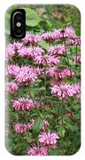 Bee Balm Garden IPhone Case