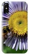 Bee On Purple Petals IPhone Case