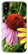 Bee On The Cone Flower IPhone Case