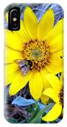 Bee On Wild Sunflowers IPhone Case