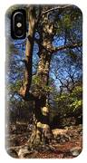 Beech Trees Coming Into Leaf  In Spring Padley Wood Padley Gorge Grindleford Derbyshire England IPhone Case