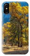 Behind The Branches IPhone Case